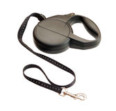 Retractable leash for dog Stock Photo
