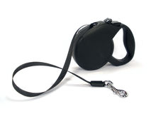 Retractable tape leash Stock Photo