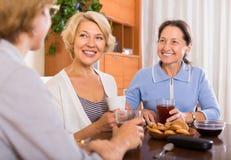 Retraités féminins buvant du thé Image stock