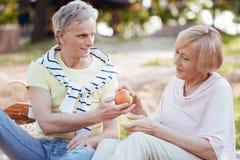 Retraités pluss âgé de soin appréciant le pique-nique dehors Photos stock