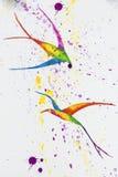 Retrait d'aquarelle oiseaux photographie stock libre de droits