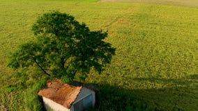 Retrait indiquant la vue aérienne du paysage rural avec la grange sous un grand arbre clips vidéos