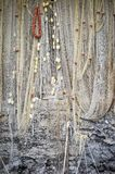 Retraso de la red de pesca Imagen del color Foto de archivo libre de regalías