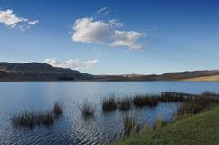Retratamiento de la orilla del lago Fotos de archivo