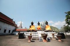 retratamiento del dhamma Imagen de archivo libre de regalías