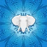 Retrato étnico de um elefante em um ornamento circular da flor Ornamento floral indiano e de um elefante Foto de Stock