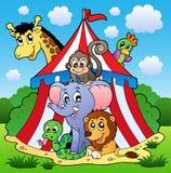 Retrato 1 do tema do circo Imagens de Stock Royalty Free