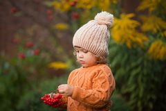 Retrato adorable de la niña pequeña en día hermoso del otoño Foto de archivo