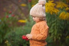 Retrato adorable de la niña pequeña en día hermoso del otoño Fotografía de archivo libre de regalías