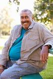 Retrato al aire libre del hombre mayor sonriente Fotos de archivo libres de regalías