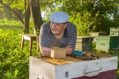 Retrato al aire libre del hombre mayor sonriente Foto de archivo libre de regalías
