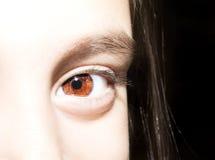Retrato ascendente próximo do macro dos olhos marrons das moças fotos de stock royalty free