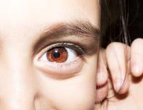 Retrato ascendente próximo do macro dos olhos marrons das moças fotografia de stock