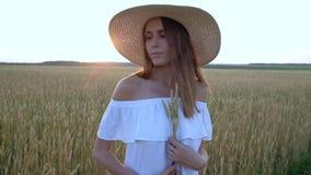 Retrato asombroso de la mujer hermosa que se coloca en campo del trigo de oro maduro almacen de metraje de vídeo