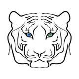 Retrato blanco y negro del tigre grande Fotos de archivo libres de regalías