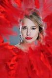 Retrato bonito da mulher quadro no vermelho Imagem de Stock Royalty Free