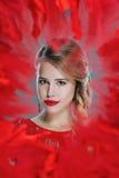 Retrato bonito da mulher quadro no vermelho Foto de Stock
