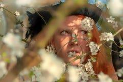Retrato bonito do close-up de uma mulher encaracolado ruivo elegante nova na árvore com as flores brancas da árvore de cereja da  imagem de stock