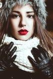 Retrato bonito do inverno Fotos de Stock Royalty Free