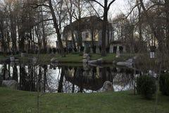 Retrato cênico das árvores refletidas na água Fotos de Stock
