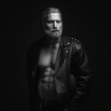 Retrato cabelludo gris del hombre Fotografía de archivo