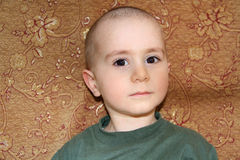 Retrato calvo del muchacho Fotografía de archivo libre de regalías