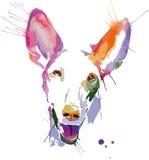Retrato coloreado del perro en técnica del arte pop Imagen de archivo libre de regalías