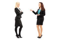 Retrato completo do comprimento das mulheres profissionais novas que têm um conv Fotografia de Stock Royalty Free