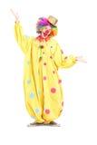 Retrato completo do comprimento de um palhaço de circo engraçado que gesticula com han Imagem de Stock Royalty Free