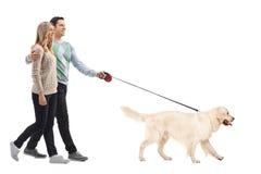 Retrato completo do comprimento de um par novo feliz que anda um cão fotos de stock