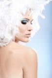 Retrato conceptual da mulher na composição do inverno fotografia de stock