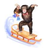Retrato da aquarela do macaco com uma coroa Fotografia de Stock Royalty Free