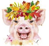 Retrato da aquarela do mini porco com a grinalda das folhas ilustração stock
