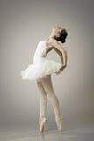 Retrato da bailarina na pose do bailado fotos de stock