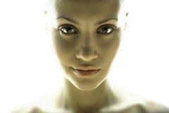 Retrato da bela arte da menina elegante Imagem de Stock Royalty Free