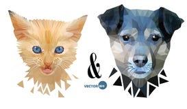 Retrato da cara do cão e gato, animais de estimação do amor, amizade e confrontação Gatinho e cachorrinho, animais do divertiment Fotos de Stock Royalty Free