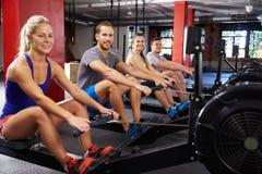 Retrato da classe do Gym que dá certo em máquinas de enfileiramento imagem de stock royalty free