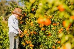 Retrato da colheita nova bonito atrativa do menino Imagens de Stock Royalty Free