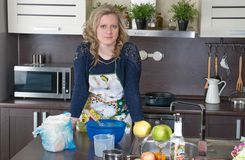 Retrato da cozinha Fotografia de Stock