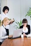 Retrato da equipe das mulheres de negócios no escritório Fotografia de Stock Royalty Free
