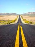 Retrato da estrada Imagens de Stock