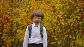 Retrato da estudante bonito feliz de sorriso do menino com trouxa que ri à câmera fora, estudante de primeiro grau que tem o dive video estoque