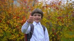 Retrato da estudante bonito feliz de sorriso do menino com trouxa que ri à câmera fora, estudante de primeiro grau que tem o dive vídeos de arquivo