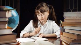 Retrato da estudante esperta Fotos de Stock