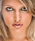 Retrato da face de uma mulher loura bonita Foto de Stock Royalty Free