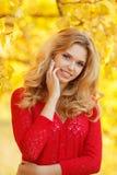 Retrato da jovem mulher bonita no parque do outono Foto de Stock