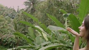 Retrato da jovem mulher que aprecia na floresta tropical verde video estoque