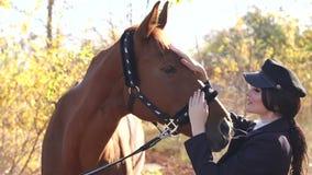 Retrato da menina bonita na roupa e no chapéu especiais com o cavalo marrom no outono vídeos de arquivo