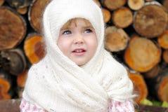 Retrato da menina bonita pequena Imagem de Stock