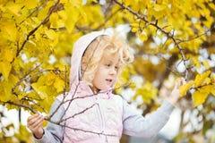 Retrato da menina com folhas de outono Imagens de Stock Royalty Free